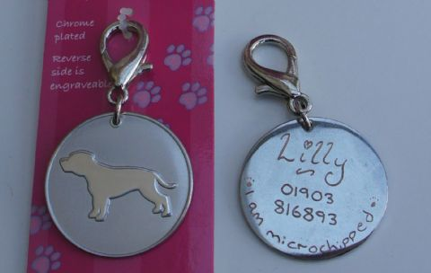 STAFFORDSHIRE BULL TERRIER ID TAG -  ENGRAVED FREE